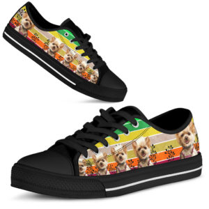 Dt Yorkshire rainbow shoes@ shoesnp Dt Yorkshire rainbow shoes@low-top 196234