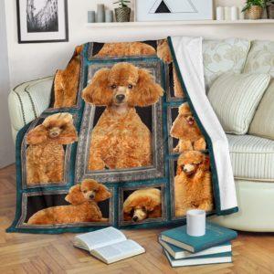 Blanket - Dogs - 3D Standard Poodle@_weecreate4u_bp3b@premium-blanket Blanket - Dogs - 3D Standard Poodle Fleece Blanket, Personalized Gifts, Custom Blanket 583436