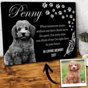 CAVA-U-Dog-DogInYourHear-Dog-0 @ Dog In Your Heart-Personalized Dog Memorial Gift. Custom Pet Portrait Dog Canvas Print. Pet Remembrance, Dog Loss Gift, Dog Passing Gift For Dog Lover.