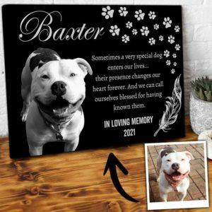 CAVA-U-Dog-SpecDog-Dog-1 @ Special Dog-Personalized Dog Loss Gift. Custom Dog Memorial Gift. Dog Portrait Pet Portrait Canvas Print. Pet Loss Dog Passing Gift For Dog Lover.