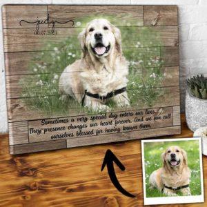 CAVA-U-Dog-SpecDogBlesUs-Dog-0 @ Special Dog Blessed Us-Personalized Dog Loss Gift. Custom Dog Memorial Gift. Dog Portrait Pet Portrait Canvas. Dog Passing Gift For Dog Lover Dog Mom Dog Dad.